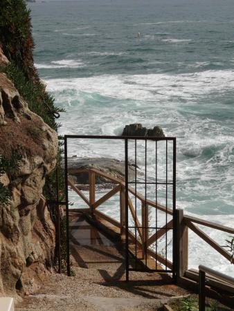 Hotel Cap Roig by Brava Hoteles : Strandzugang
