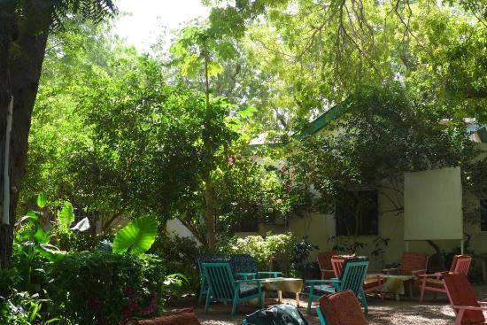 Where to Eat in N'Djamena: The Best Restaurants and Bars