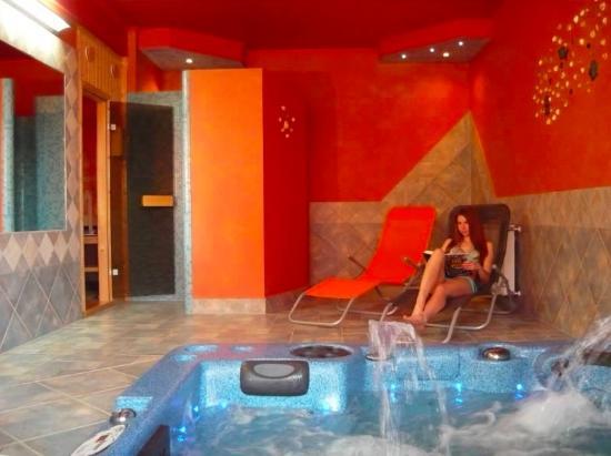 Erika Pension & Apartments: Wellness area