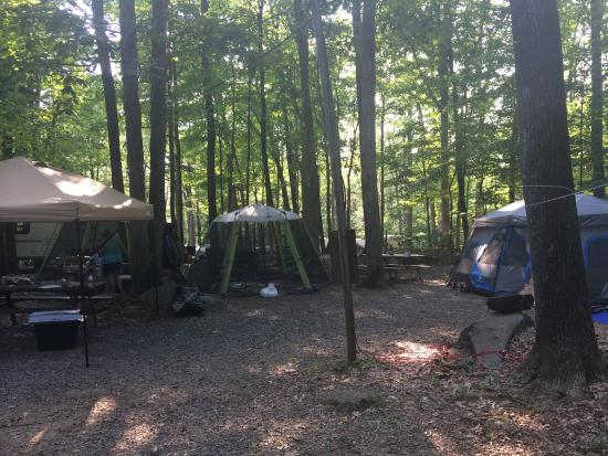 Colonial Woods Campground: Campsite