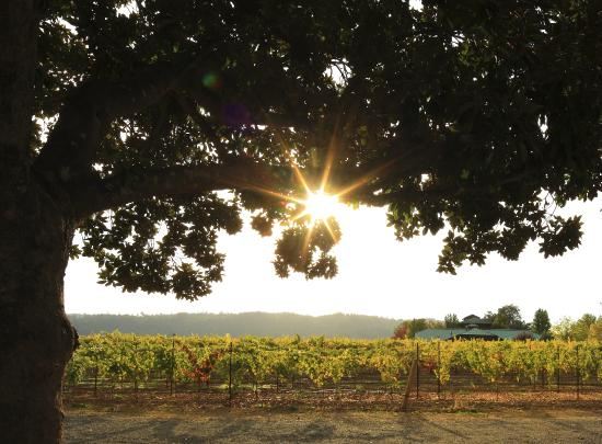 deLorimier Winery & Vineyard Lodging: View