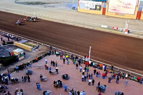 Okc races
