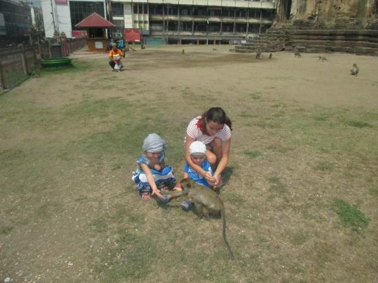 palais des singes - Foto van Phra Prang Sam Yot, Lop Buri - TripAdvisor