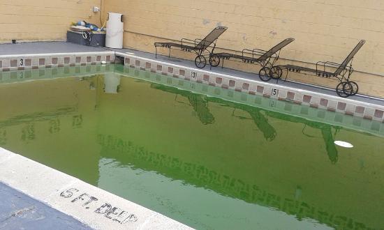 Vista Inn & Suites Memphis: Outdoor pool