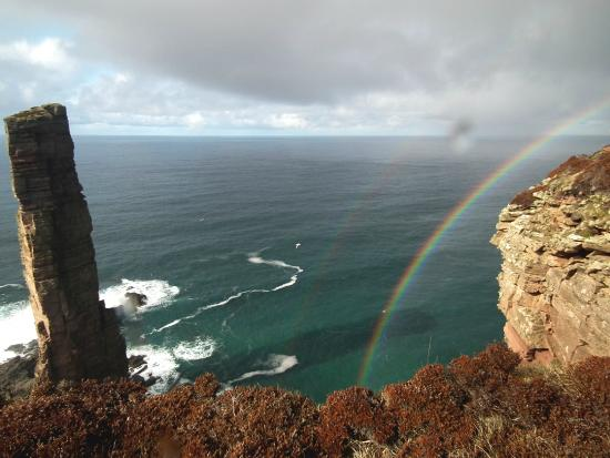 Peedie Orkney Day Tours: Old Man of Hoy