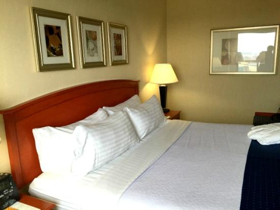 Holiday Inn & Suites Ottawa Kanata: King size bed