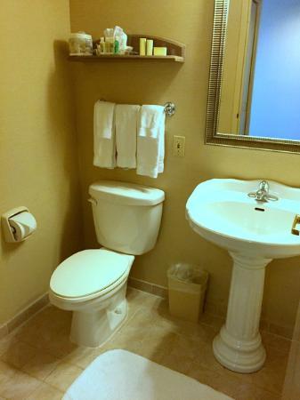 Holiday Inn & Suites Ottawa Kanata: Bathroom
