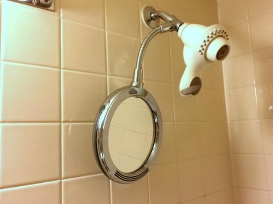 Holiday Inn & Suites Ottawa Kanata: Shower Mirror