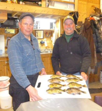 Roslyn, Dakota del Sur: Bluegills caught on area lake