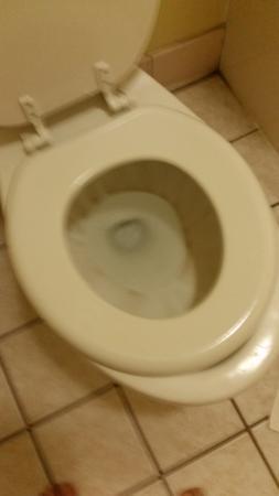Magnuson Hotel Port Allen: nasty