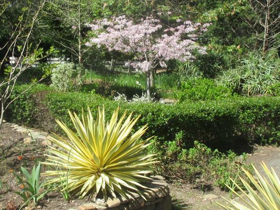 Garin Regional Park: Garden Area - Garin/Dry Creek Pioneer Regional Parks, Hayward/Fremont, Ca