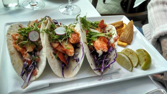 The Palmetto Cafe: Los cabos style taco with huge chunks of Lobster meat