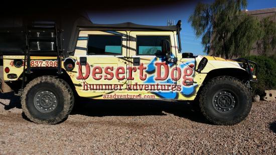 Desert Dog Hummer Adventures: Desert Dogs - Delightful!