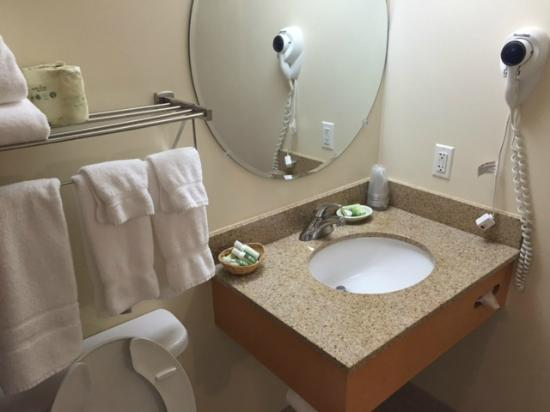 The National Conference Center: Bathroom