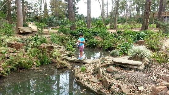 Mercer Arboretum Botanic Gardens Picture Of Mercer Arboretum Botanic Gardens Humble