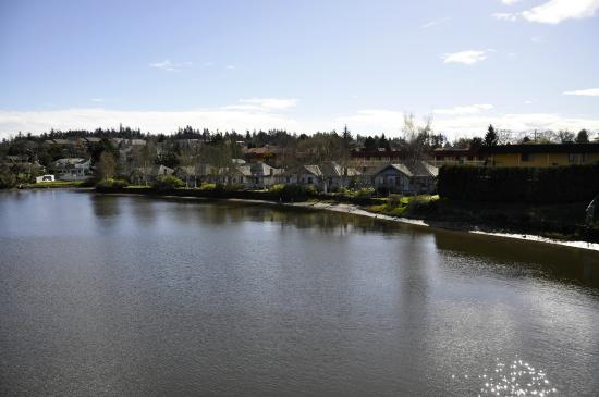 Econo Lodge Inn & Suites : Cottages from Island Hwy bridge