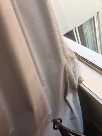 Knightsbridge Apartments: Curtain mould