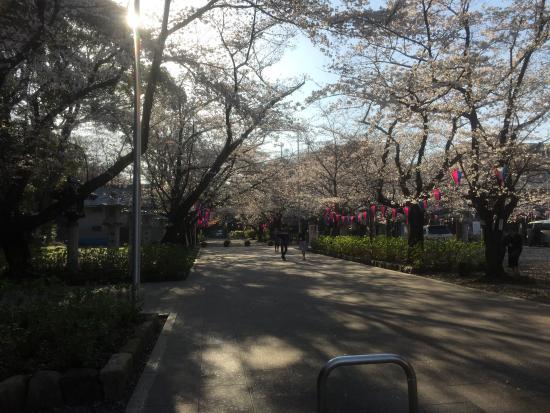 Aichiken Gokoku Shrine