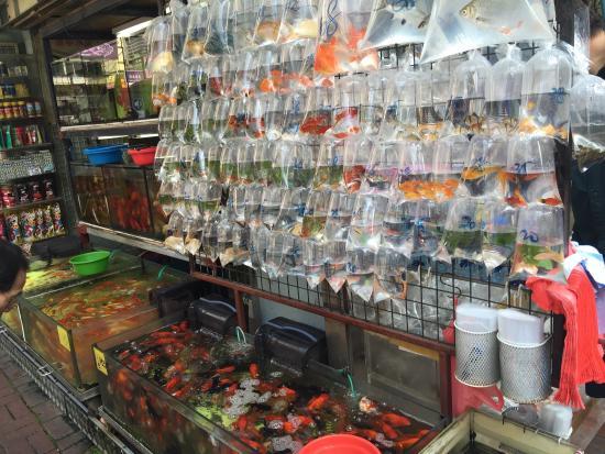 Hongkong Ziyu Market
