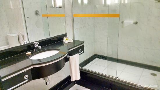 Novotel Sao Paulo Center Norte: Banheiro degradado