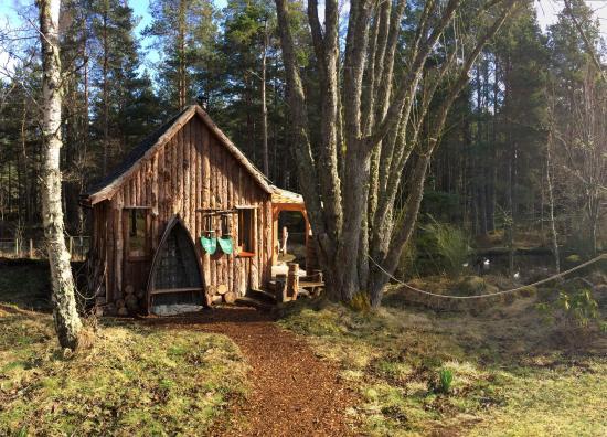 Ducks nest cabin