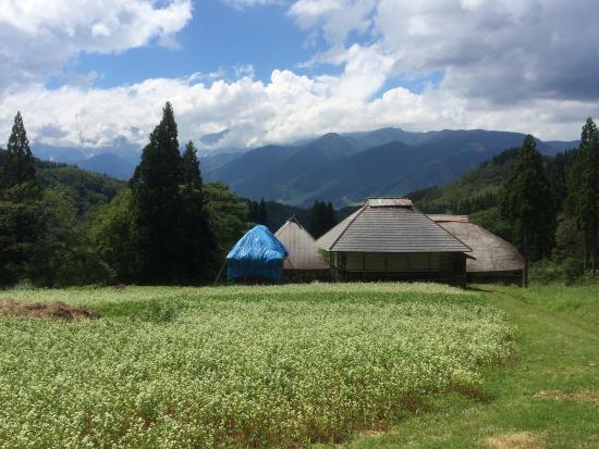 Maki Village