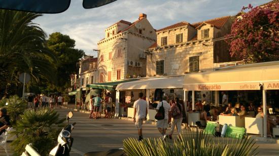 Cavtat Old Town : Bars in Cavtat bay