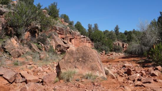 Diamondback Gulch Picture Of Pink Jeep Tours Sedona