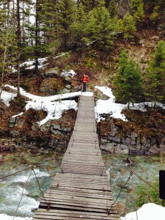 Glacier Adventure Guides - Day Tours: The owner Greg