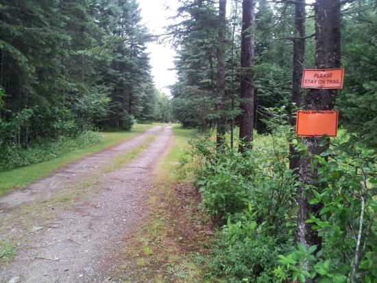 Deer Mountain Lodge & Wilderness Resort: TRAIL ACCESS TO RIDE THE WILDS!