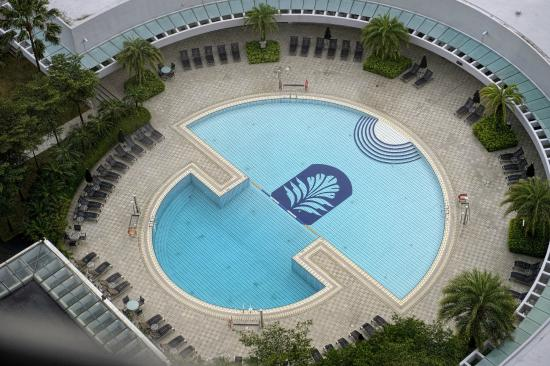 The swimming pool viewed from the glass lifts picture - Pan pacific orchard swimming pool ...