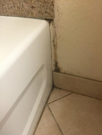 Days Inn Mount Hope: mold in bathroom