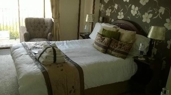 Ael y Bryn Hotel: Room 6