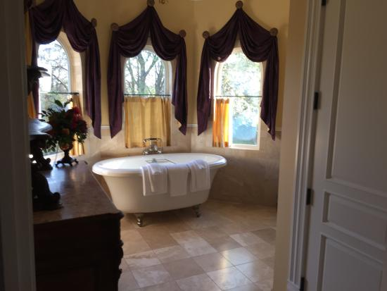 Vine & Roses Bed & Breakfast: The Rhone suite