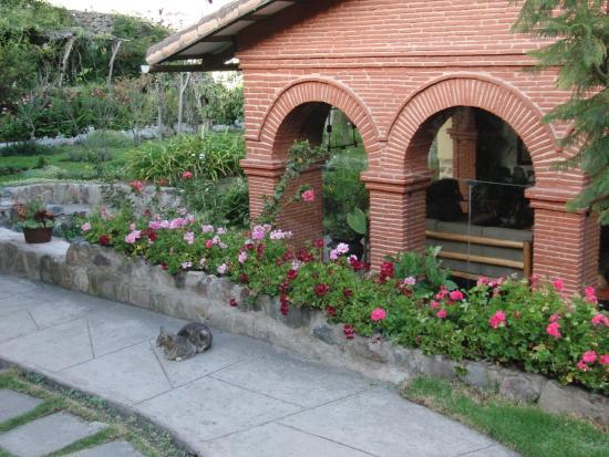 Hotel Samanapaq: Garden and lounge