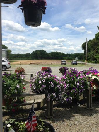 Smithfield, RI: A View While Eating Lunch