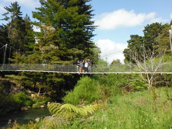 Whangarei, Nueva Zelanda: suspended bridges