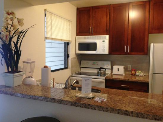 The Gardens at West Maui Hotel : Kitchen with all appliances and dish soap, sponge, etc.