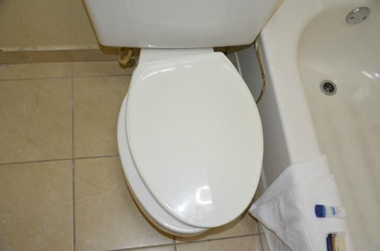 Motel 6 Charlotte NC Airport: Unsecured toilet seat