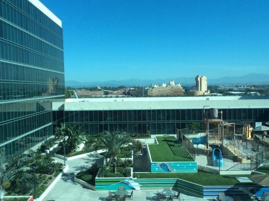 Pool Area Picture Of Hilton Anaheim