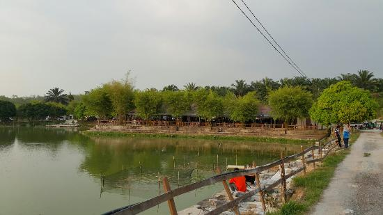 Tom yam prawn foto di fish valley semenyih semenyih for Koi pond traduzione