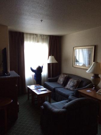 Staybridge Suites Calgary Airport: living room