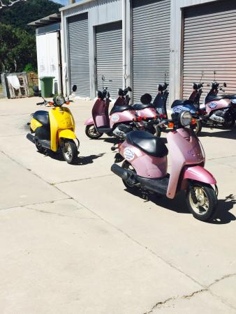 Road Runner Scooter Hire