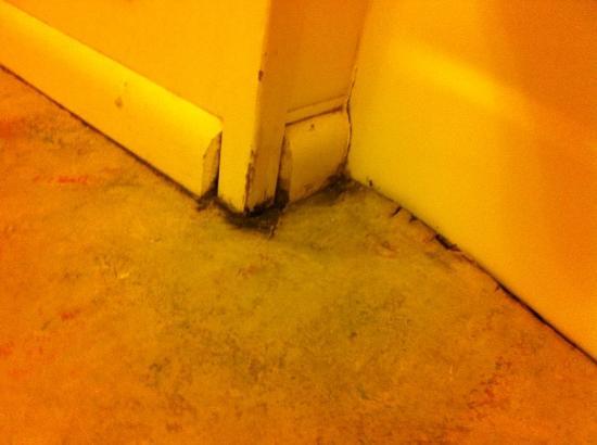Inn of the Beachcomber: bathroom floor