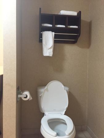 Hampton Inn Madison: Wonderful bathrooms