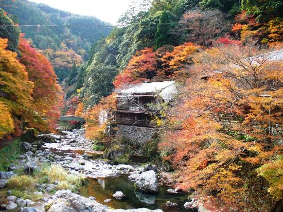 Kiyotaki River