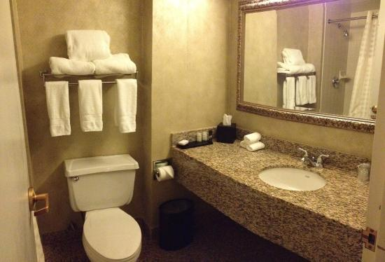 Embassy Suites by Hilton Syracuse: Bathroom