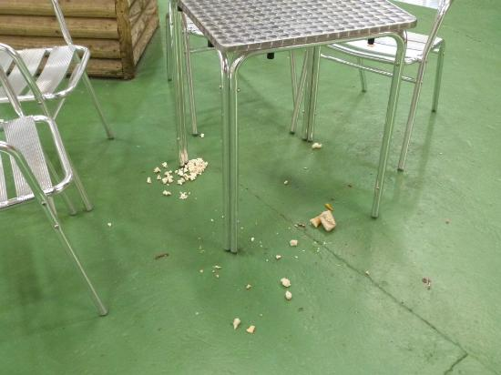 Begelly, UK: Mess on cafe floor.Still there over an hour later !