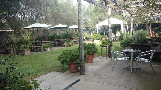 Abermain, Australien: Awesome peaceful beer garden