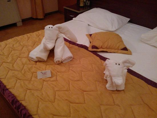 Jelena Hotel: Surprise
